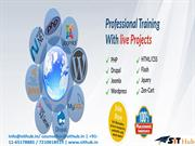 Web Designing training course Institute in dwarka,, Delhi