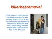 Killer bee live removal Cathedral City CA