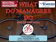 COMPANY - WHAT DO MANAGERS DO