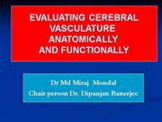 EVALUATING  CEREBRAL VASCULATURE ANATOMI