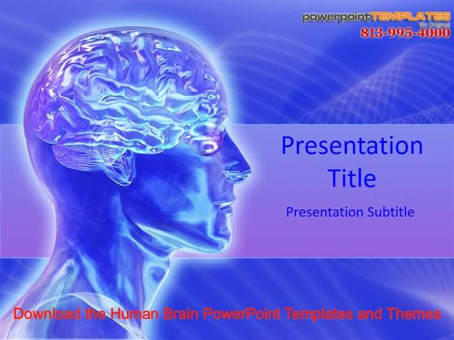 Download the human brain powerpoint templates and themes authorstream toneelgroepblik Image collections