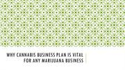 Why Cannabis Business Plan Is Vital for any Marijuana Business