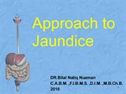 L2. APPROACH TO JAUNDICE