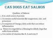 CAN DOGS EAT SALMON