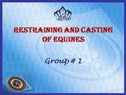 Restraining and Casting of Equines