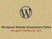 Why your Website Should be Developed Using Wordpress CMS?