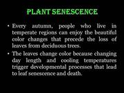 Senescence and abssision