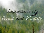 Importance of Forest and Wildlife