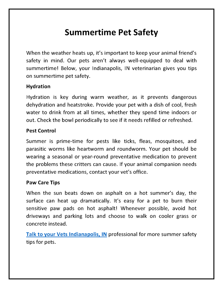 Summertime Pet Safety |authorSTREAM