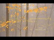1-Nov 05-Autumn Morning Fog-Alone-Adam Hurst cello