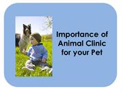 Importance of Animal Clinic for your Pet