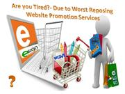 Scope of Best  Website Promotion Service in India
