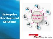 Enterprise Development Solution