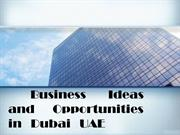 Business Ideas and Opportunities in Dubai UAE
