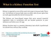 Blood Test for Kidney Function