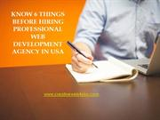 Know 5 things before hiring Professional Web Development Agency in USA