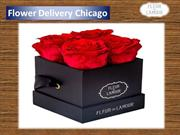 Flower Delivery Chicago