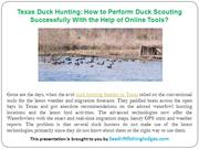 Texas Duck Hunting-How to Perform Duck Scouting Successfully With the