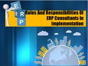 Roles And Responsibilities Of ERP Consultants In Implementation