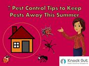 7 Pest Control Tips to Keep Pests Away This Summer