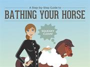 Horse Grooming Tips: Bathing Your Horse