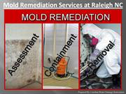Mold Remediation Services at Raleigh NC