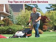 Top Tips on Lawn Care Services