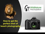 Learn the Art of Shooting the Wild at a Nature Photography Workshop