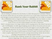 Wonderful Content Marketing Service Provider | Rank Your Rabbit