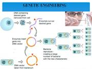 genetic engg Restriction Enzymes new