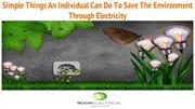 Simple Things An Individual Can Do To Save The  Environment Through El