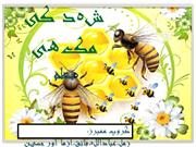 Honey Bee Poem
