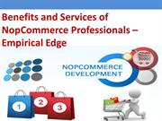 NopCommerce-Development-Services