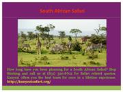 Best South Africa Safari