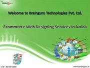 Ecommerce Web Designing Services in Noida