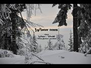 1-Jan 10-Winter trees-Vivaldi-Winter-Viktor Barimov accordeon