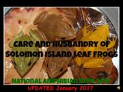 Solomon Island Leaf Frog Presentation for National Amphibian Expo 2014