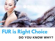 5 Reasons Why We Must Wear Fur Coats - Fursbygartenhaus.com