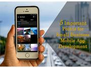 5 Important Points for Small Business Mobile App Development