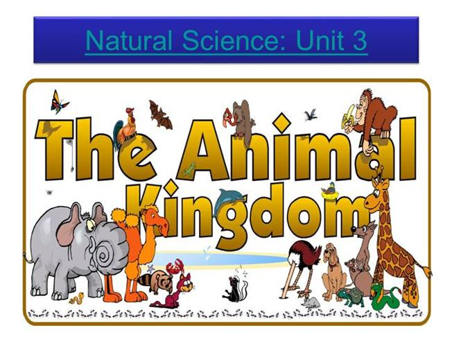 Chart Authorstream Science 3the Animal Kingdom authorstream