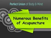Numerous Benefits of Acupuncture