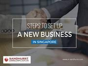 Establish Your New Business Company in Singapore