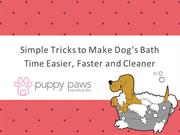 Simple Tricks to Make Dog's Bath Time Easier, Faster and Cleaner