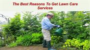 The Best Reasons To Get Lawn Care Services