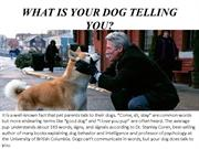 WHAT IS YOUR DOG TELLING YOU
