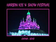 The Harbin Festival - China 2010