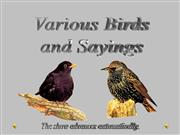 Birds and Sayings (Rev)