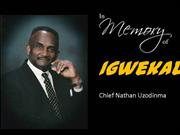 Special Tribute Chief Nathan Uzodinma