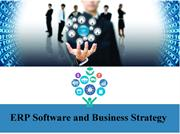 ERP Software and Business Strategy