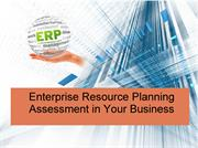 Enterprise Resource Planning Assessment in Your Business